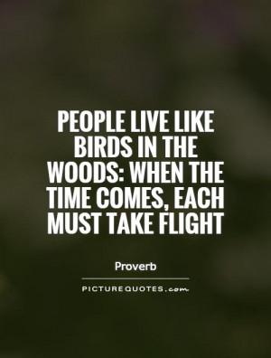 Flight Quotes