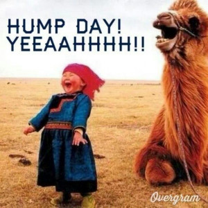 Hump Day yeah!!