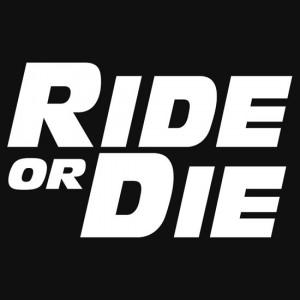 Lumpose › Portfolio › ride or die paul walker tribute quote