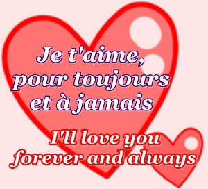 how to say i love you in french translation