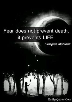 Fear does not prevent death, it prevents LIFE | Popular inspirational ...