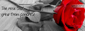 the rose that grew from concrete -tupac shakur Profile Facebook Covers