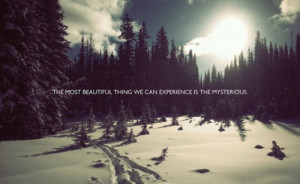 Inspiring Quotes In Landscape Images