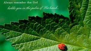 PHOTO: Hallmark greeting card reads,