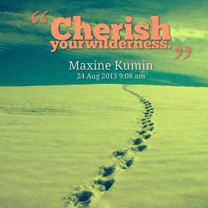 Quotes Picture: cherish your wilderness