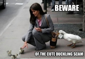 Aflac wanted dead or alive for theivery!