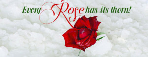 Red Roses Images With Quotes Red-rose-with quote image 2013