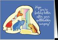 After Gallbladder Surgery Animals card - Product #418350