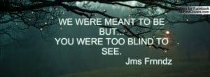 WE WERE MEANT TO BEBUT...YOU WERE TOO BLIND TO SEE. Jms Frnndz cover