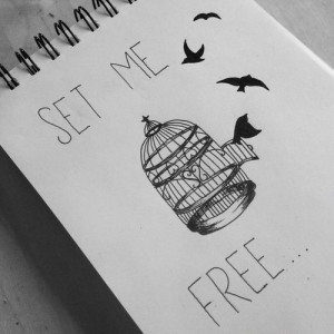 birds, black and white, free, freedom, love, quote, text