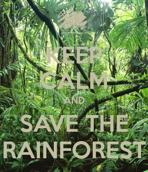 Related to Save The Rainforest