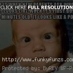quotes for new parents funny baby quotes for new parents