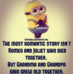 Minion-Quotes-The-most-romantic-story.jpg