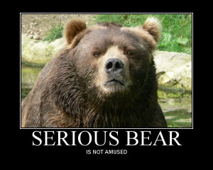 Can someone give me a little Patient Bear action??