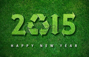 24050577-happy-new-year-2015-with-ecology-concept-for-2015-year-the ...
