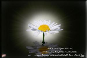 Christian Quotes: Love of God Papel de Parede Imagem