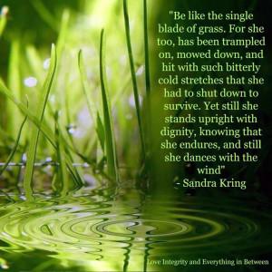single blade of grass