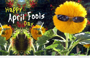 April Fool's Day Pictures, Images for Facebook, Whatsapp, Pinterest