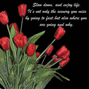 inspirational, inspirational quotes, quotations, night time tulips ...