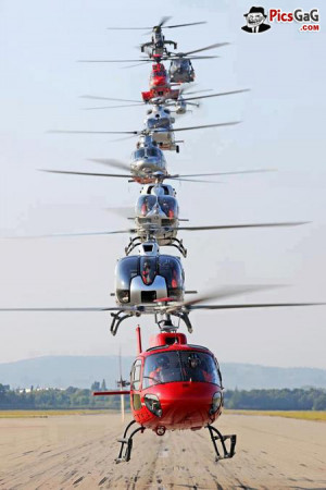 incoming search terms funny helicopter poem helicopter funny quotes