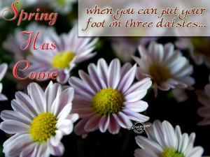 spring season sayings funny 6 spring season sayings funny 7 spring