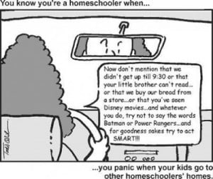 Taking The Mickey Out Of Homeschooling