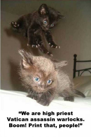 Cats saying Charlie Sheen quotes-that's just funny.