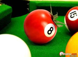 funny-tomato-pool-table-ball-pics
