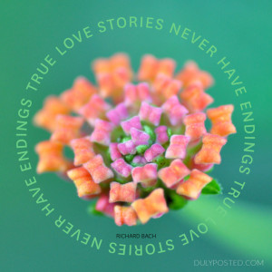 dulyposted_love-stories_quote.jpg