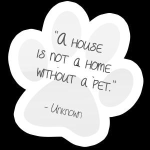 pet-quotes-paw-1