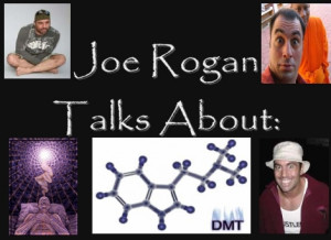 Joe Rogan talks about DMT