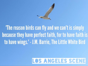 Inspirational Bird Quotes
