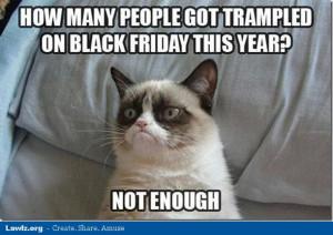 Hilarious Cat Memes!