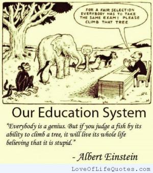 quote albert einstein quote on stupidityon stupidity albert einstein ...