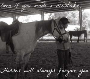 Horse quotes, Horse Gallery
