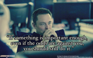 elon_musk_quote__on_important_things
