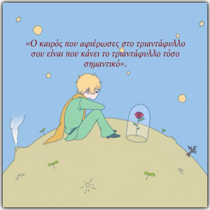 greek, greek quotes, little prince, quotes, rose, wisdom, wise ...