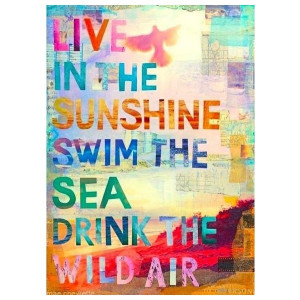 Summer quotes liked on Polyvore