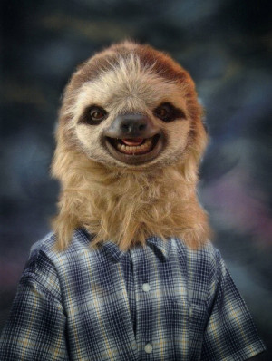 Creepy Sloth Face Creepy school sloth photo