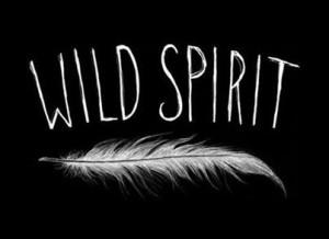 feather, inspire, life, lol, love, quotes, spirit, true, tumblr, wild