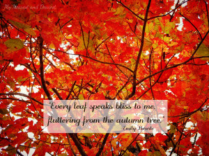 ... fall photos. I love this one about autumn leaves by Emily Bronte