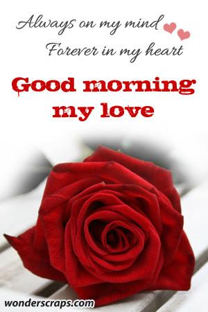 Good Morning My Love (1)