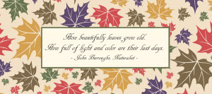 Sayings curated from over a Fall Leaves Quotes