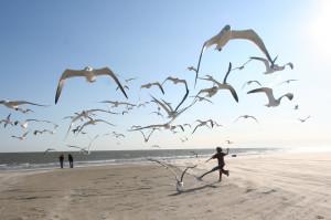 Freude als befreiendes Lebensgefühl