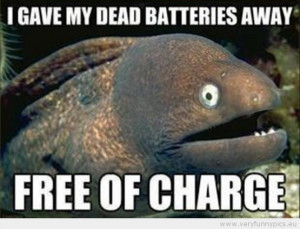 Funny One liners (8 pictures)
