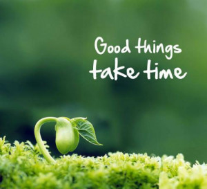 good things take time 9 up 0 down ismail gul quotes added by ismail