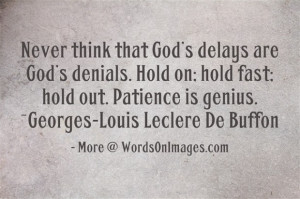 Never think that god delays are god denials. hold on, hold fast, hold ...