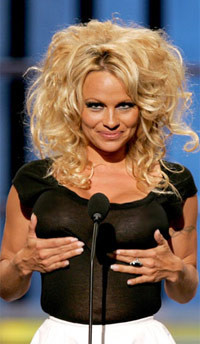 What broke Pamela Anderson's heart in India?