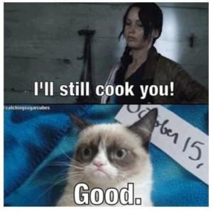 Grumpy cat meets HG.