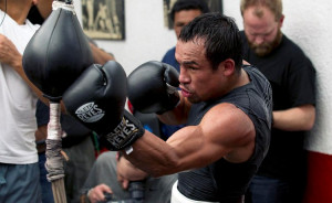 Juan Manuel Marquez vs Mike Alvarado